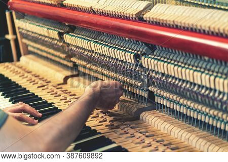 Piano Tuning Process. Closeup Of Hand And Tools Of Tuner Working On Grand Piano. Detailed View Of Up
