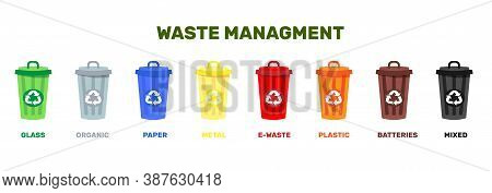 Vector Illustration Of Containers For Garbage Of Different Types. Waste Managment Conept. Zero Waste