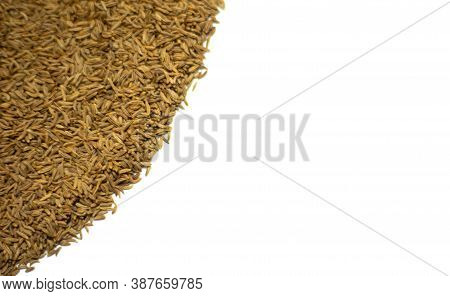 Cumin Seeds On A White Background. Cumin.