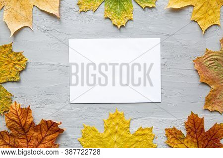 Colorful Leaves Frame And Empty Card For Greetings And Invitation Text, Top View. Bright Autumn Colo