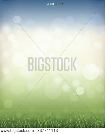 Green Grass Field With Light Blurred Bokeh Background. Vector.