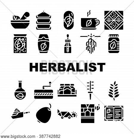 Herbalist Medical Collection Icons Set Vector Illustrations