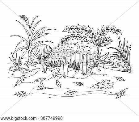 Coloring Of An Autumn Forest Glade With Mushrooms, Fly Agarics, Leaves, Acorns, And Plants. Vector I
