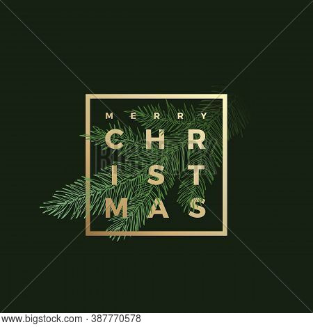 Merry Christmas Abstract Vector Classy Label, Sign Or Background Template. Hand Drawn Fir-needle Spr