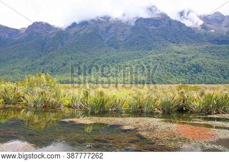 Mirror Lakes Are A Set Of Lakes Lying North Of Lake Te Anau And Immediately To The West Of The Road
