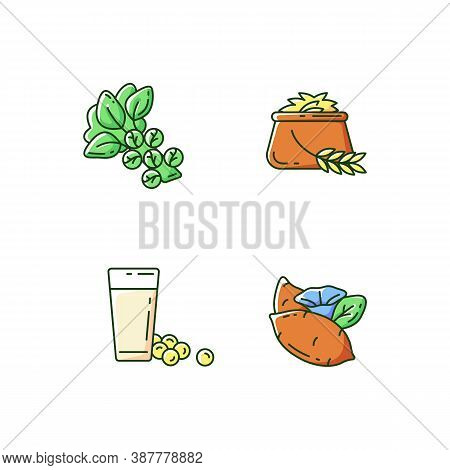 Health Vegetables Types Rgb Color Icons Set. Eco Brussels Sprouts. Organic Soy Milk. Sweet Potatoes