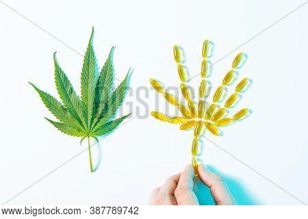 Hemp Leaf Consisting Of Clear Cbd Cannabidiol Capsules With Human Hand And Marijuana, Top View
