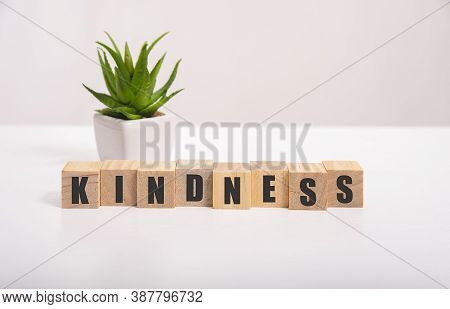 Word Kindness Made With Wood Building Blocks, Stock Image