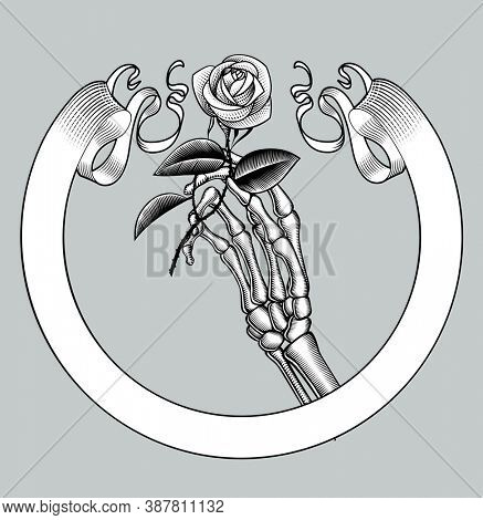 Skeleton hand holding a white rose and retro ribbon banner. Vintage engraving stylized drawing