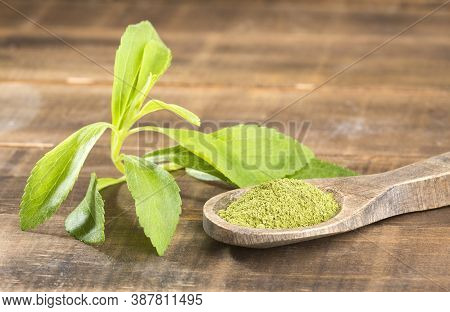 Natural Sweetener In Powder From Stevia Plant - Stevia Rebaudiana. Wooden Background