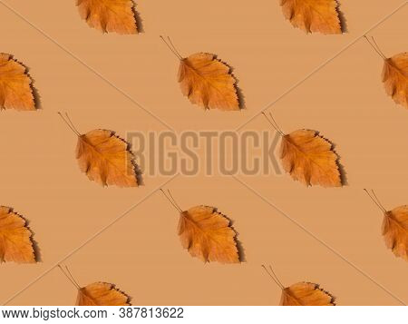 Beautiful Autumnal Background Seamless Fall Pattern Dry Orange Tree Leaves On Brown Background. Eleg