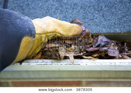 A fall tradition - cleaning the gutters of leaves. Here we see them clogging the gutters of a traditional home. Could be used for advertising/clean up articles/etc. Narrow DOF poster