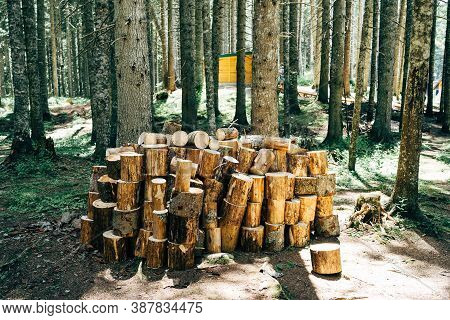 A Glade In The Forest With Folded Firewood For A Firebox Against The Background Of Trees.