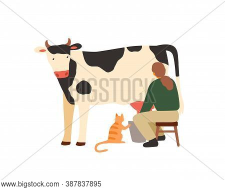 Woman Farmer Sitting On Chair And Milking Cow. Milkmaid Working On Dairy Farm. Organic Rural Milk Pr