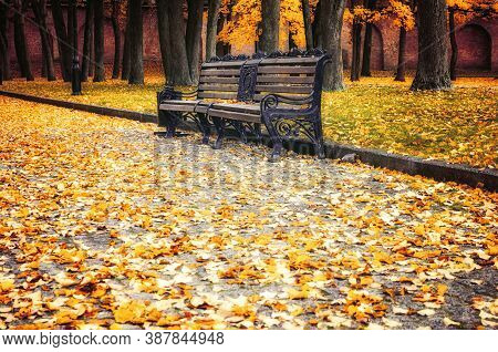 Autumn landscape, city autumn park view with park bench and fallen autumn leaves on the foreground. Diffusion and vintage filter applied
