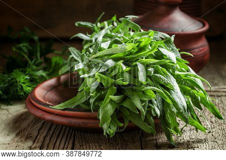 Fresh Green Tarragon In A Beam In An Earthenware Pot On The Old Wooden Background In Rustic Style, S
