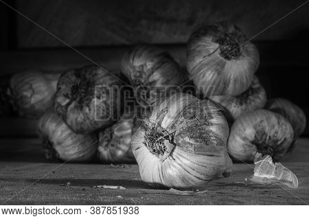 Several Pieces Of Fresh Garlic, Close-up, Black And White. Can Be Used To Illustrate The Beneficial