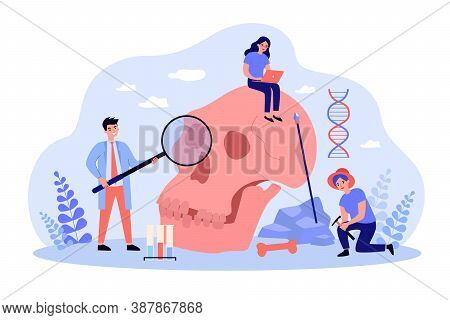 Archaeologists And Scientists Studying Neanderthal Skull And Dna. Vector Illustration For Anthropolo