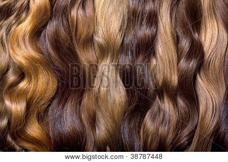 Natural human hair on a white background