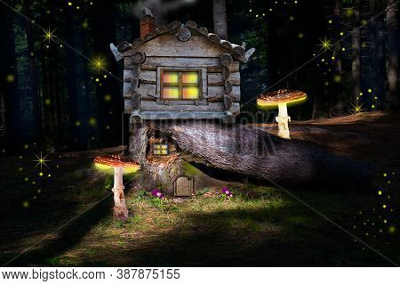 Magic, A Fantastic Pine Forest With Pine Trees And Giant Mushrooms And Toadstools . A Fairy-tale Woo
