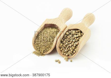 Coriander Seeds And Powder In Wooden Scoop Isolated On White Background ( Coriandrum Sativum )