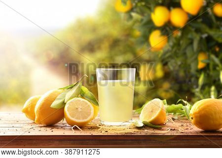 Freshly Squeezed Juice On A Wooden Table Full Of Lemons With Lemon Trees In The Background And A Ray