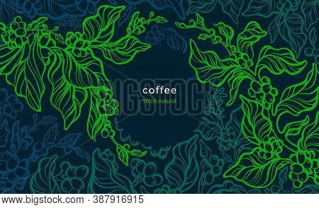Coffee Plant. Vector Green Background. Art Line Illustration. Tropical Tree, Aroma Bean, Leaves. Fre