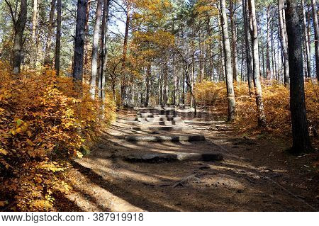 Autumn Landscape. Beautiful Alley In The Park. Steps Made Of Natural Stone Go Up The Mountain. Yello