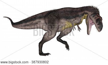 Tyrannotitan Dinosaur Roaring Isolated In White Background - 3d Render