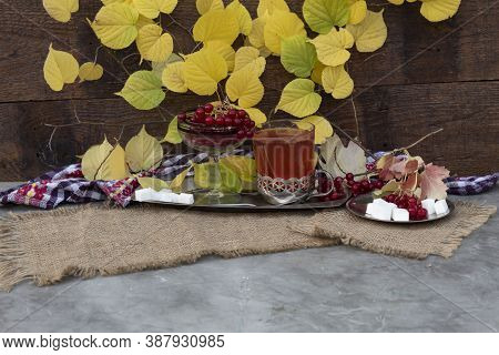 Against The Background Of A Linden Branch With Autumn Leaves, There Is A Glass Of Tea With Viburnum