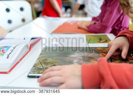 Russia Moscow 25.09.20 Schoolkids Read Book About Insects, Spiders With Illustrations In Children's