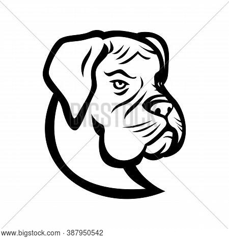 Black And White Mascot Illustration Of Head Of A Boxer Dog, German Boxer Or Deutscher Boxer,  A Medi