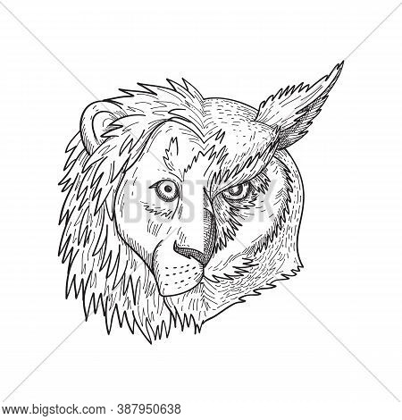 Black And White Drawing Sketch Style Illustration Of A Head Of Lion With Mane On One Half And Great
