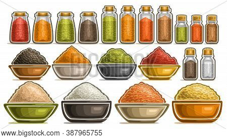 Vector Set Of Different Spices, Collection Of Isolated Illustrations With Healthy Cereals In Pots, D