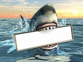A shark holding a billboard in his mouth. Copy-space available to insert your own text/images. Digital illustration. poster