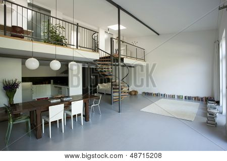 Spacious apartment with mezzanine and white wall