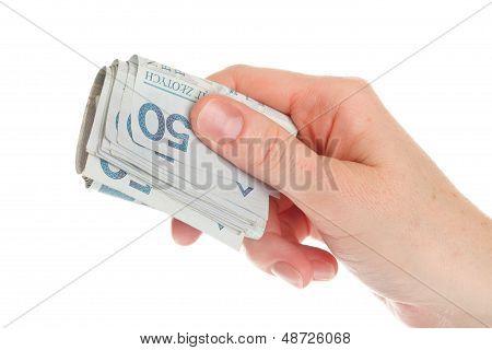 Polish Money Isolated In Hand