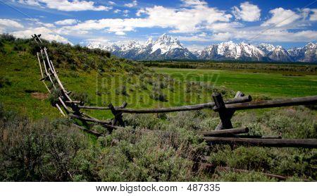 Teton Fenceline