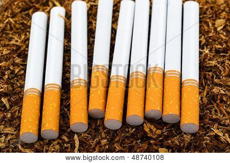 closeup of cigarettes detail on tobacco background