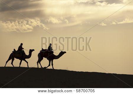 Strolling In The Desert
