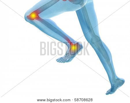 Conceptual 3D human man anatomy or health design, joint or articular pain, ache or injury isolated on white background poster
