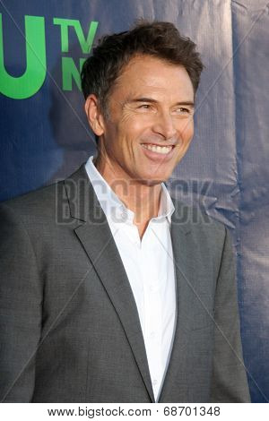 LOS ANGELES - JUL 17:  Tim Daly at the CBS TCA July 2014 Party at the Pacific Design Center on July 17, 2014 in West Hollywood, CA