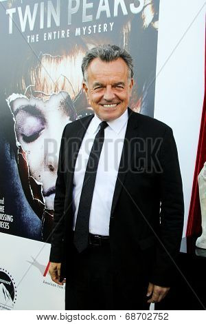 LOS ANGELES - JUL 16:  Ray Wise at the 'Twin Peaks - The Entire Mystery' Blu-Ray/DVD Release Party And Screening at the Vista Theater on July 16, 2014 in Los Angeles, CA