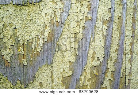Texture Of Old Wood With Remnants Of Yellow Paint Closeup As Background