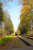 Railway and old tramcar in autumn forest poster