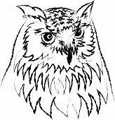 Line art of Siberian eagle owl or Bubo bubo sibiricus. vector poster