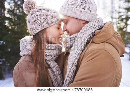 Amorous dates in winterwear touching by noses outdoors
