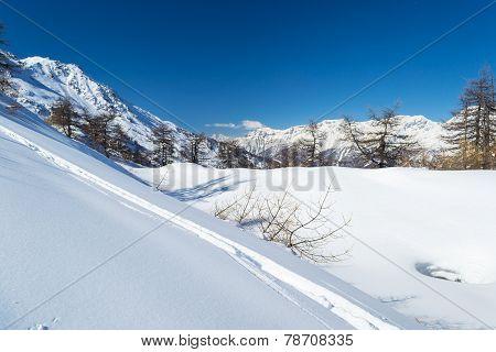 Ski Slope In The Alpine Arc