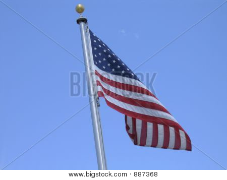 Flag In Breeze