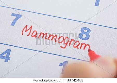 Hand With Mammogram Written On Calendar